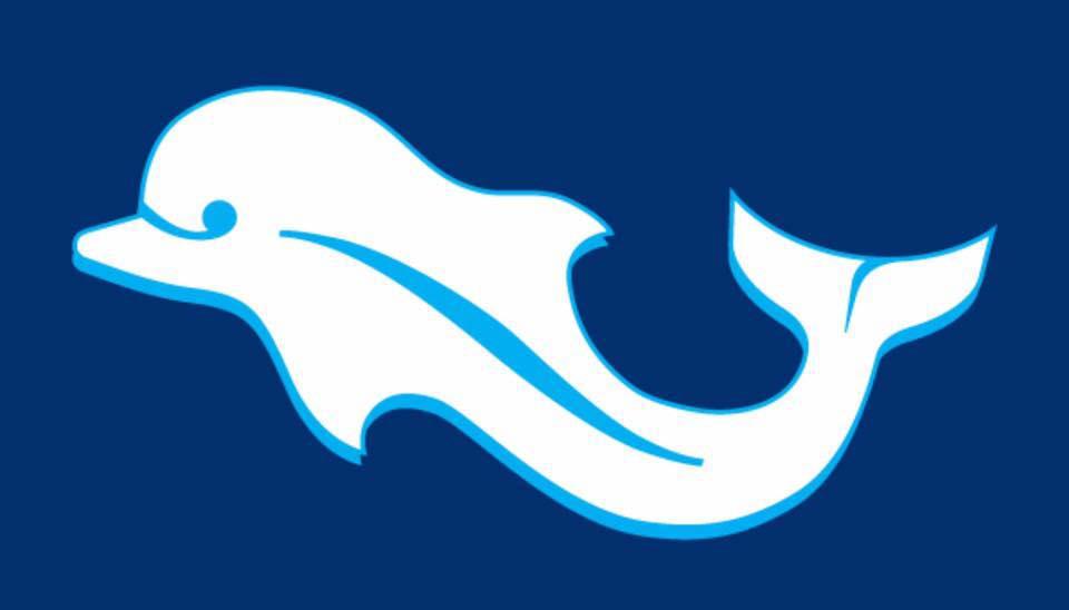 delfino insaziabile gli juniores biancazzurri sono